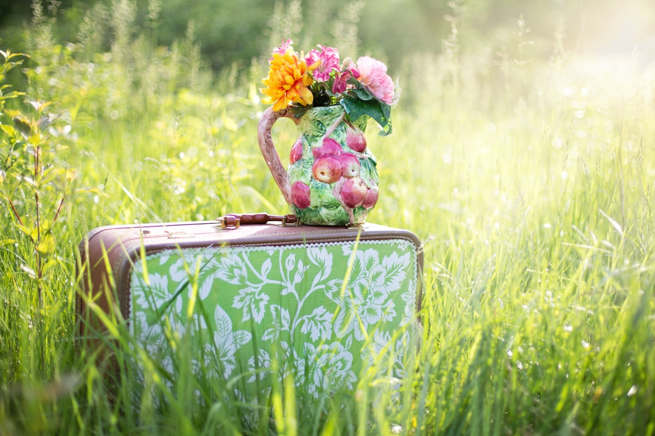 Valise dans l'herbe